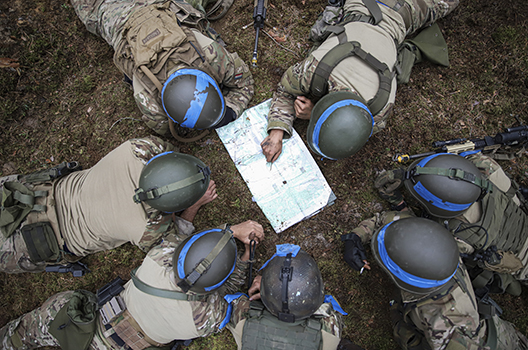 On the ground with Iron Wolf: NATO put to the test