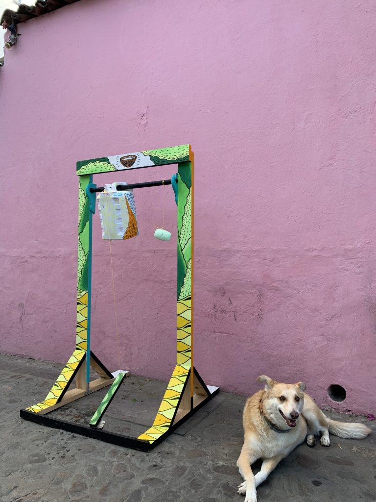 dog next to handwashing station